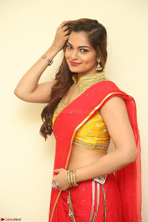 Actress Ashwini in Golden choli Red saree Spicy Pics ~  111.JPG