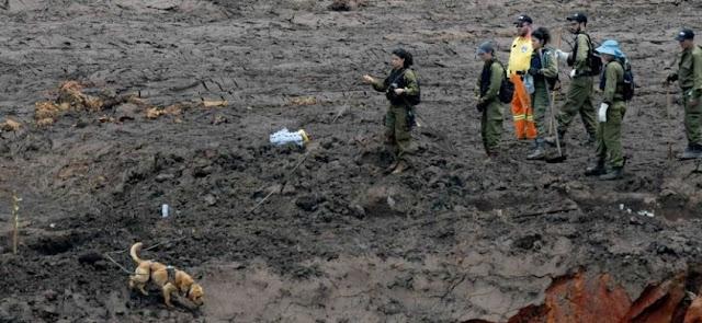 Cinco pessoas da lista de desaparecidos de Brumadinho são localizadas vivas