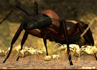 Ant Simulator Games For Android
