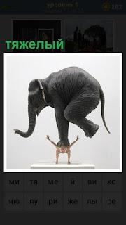 на спине у мужчина одной ногой стоит тяжелый слон