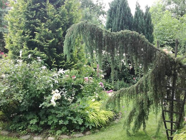 nastrój w ogrodzie, podział przestrzeni w ogrodzie