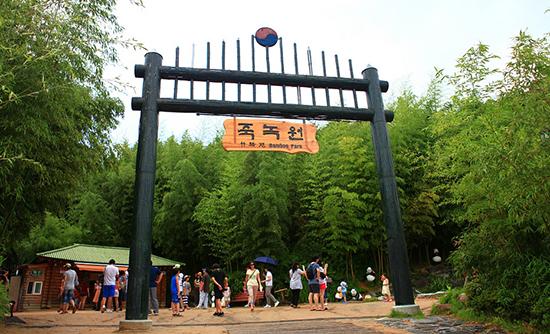 wisata bambu Damyang