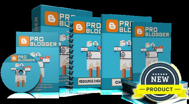 PLR Blogger