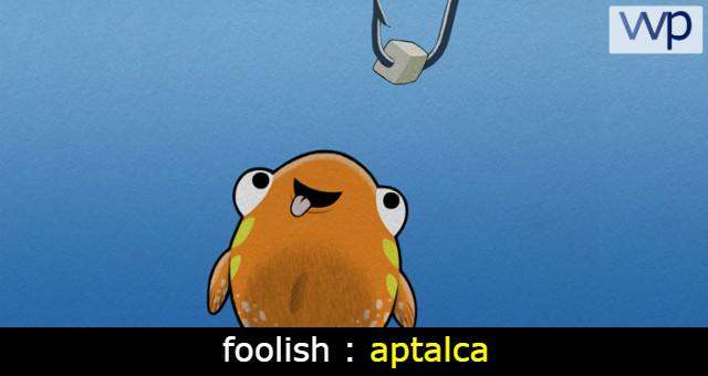foolish ne demek