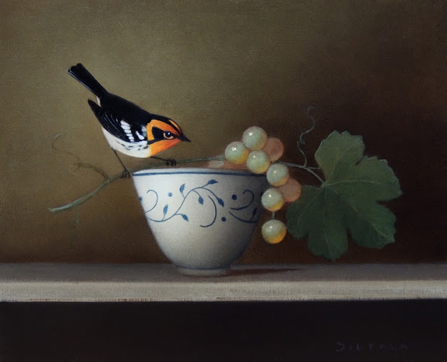 Avian art, bird painting, warbler, bird art, bird still life