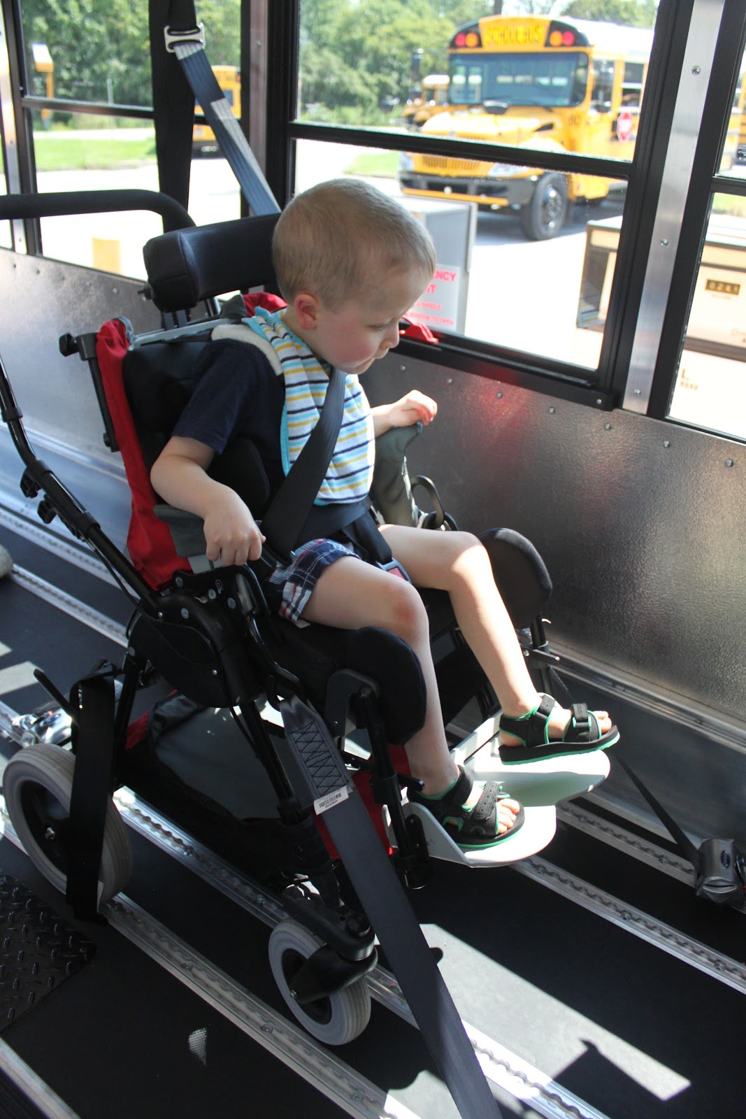Wheelchair Seat Belt Stool Chair Dream Meaning Chasing Rainbows The Wheels On Bus