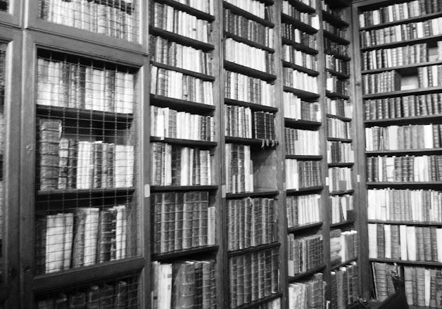 Imagen de una biblioteca (archivo del autor)