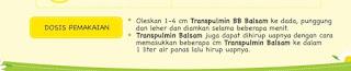 Transpulmin® Balsam Dan Kehangatan Ibu, Cara Mudah Redakan Influenza