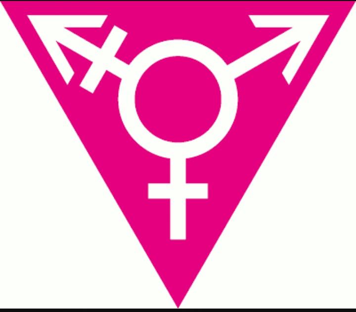 Rapiered Sapients Symbols Of Feminism