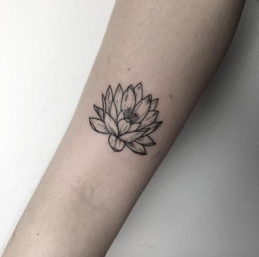 Esta flor de lótus