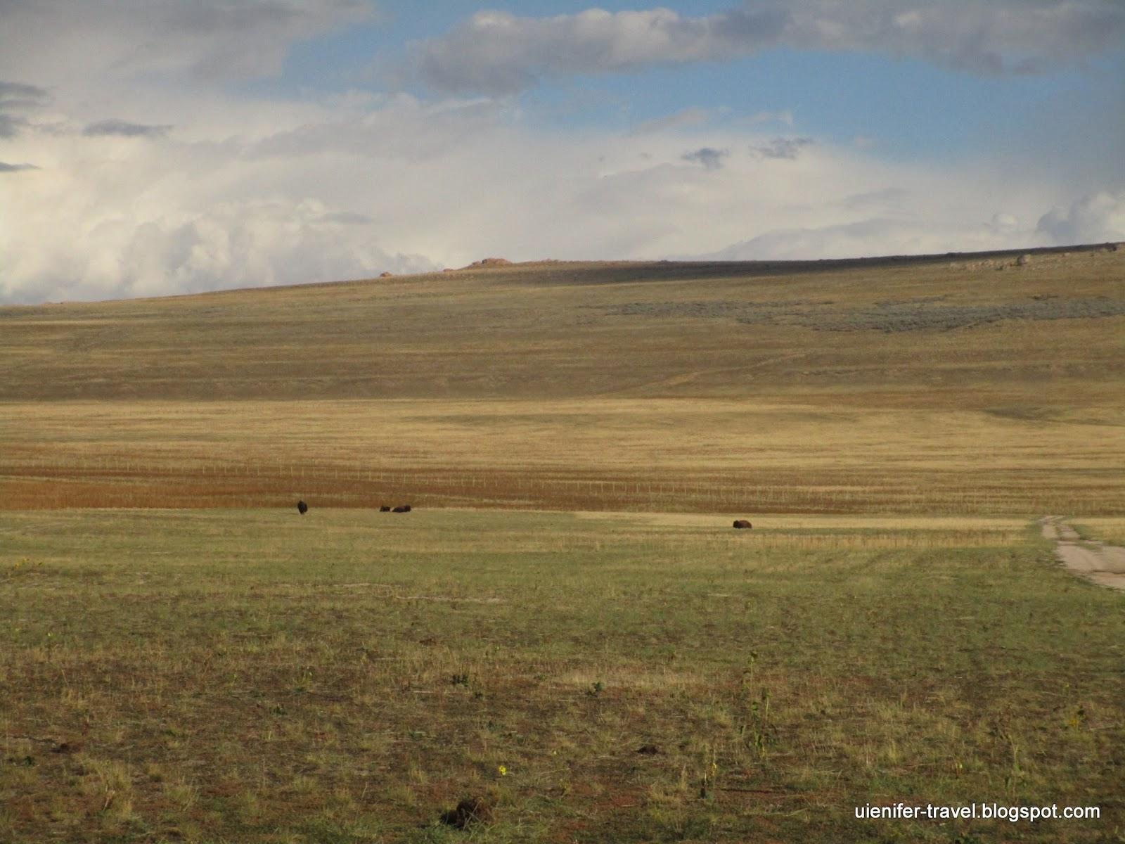 Остров Антилопа - Antelope Island, UT