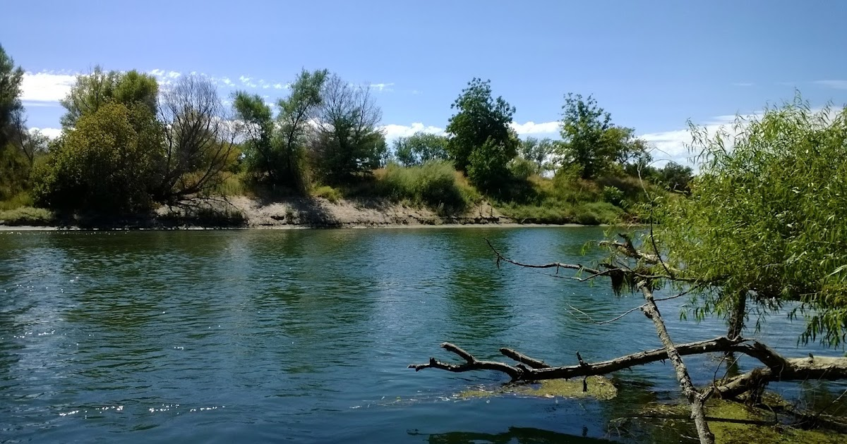 Keep Calm And Fly Fish Riverfront Park S Feather River Access