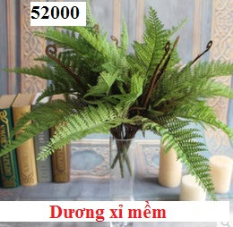 Phu kien hoa pha le tai Giang Bien
