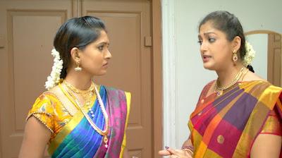Vani Rani- Sun TV Show