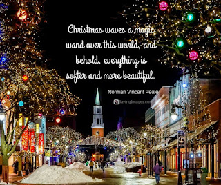 wishing-merry-christmas-quotes