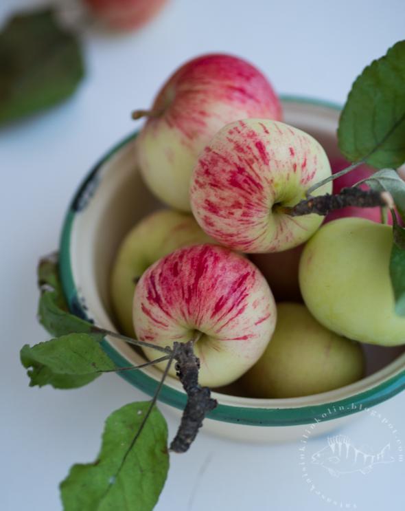 Omenamehu Mehumaijalla