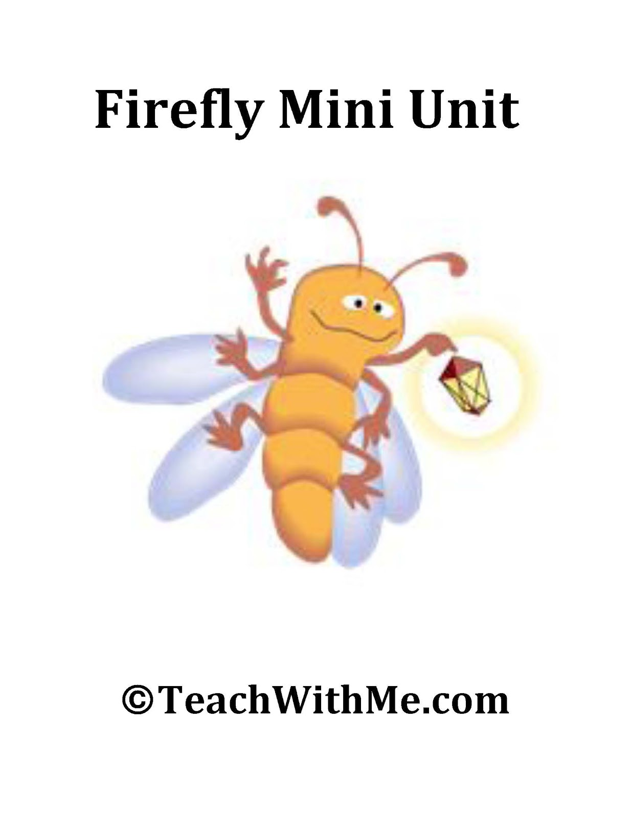 firefly life cycle diagram  firefly insect diagram