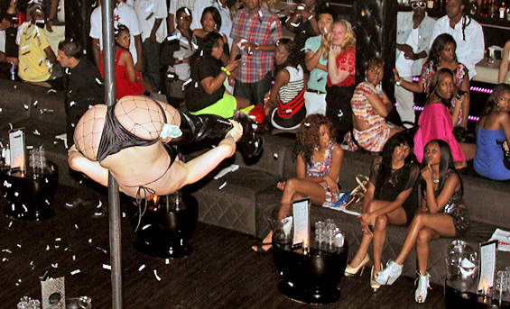 Jacob Katel Miami Freelancer Pole Dancer At Cameo Nightclub