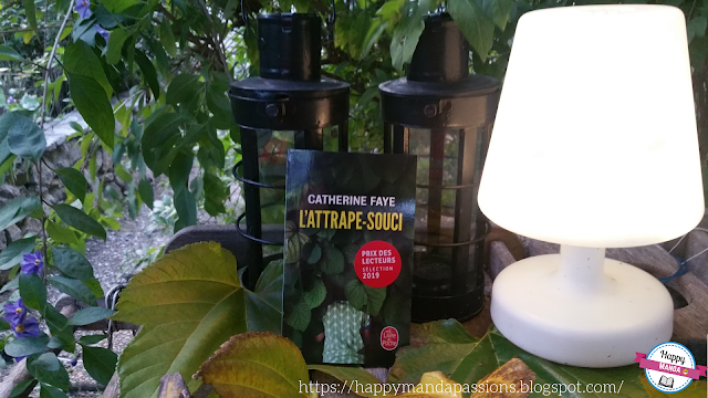 L'attrape-souci Catherine Faye avis chronique livre addict