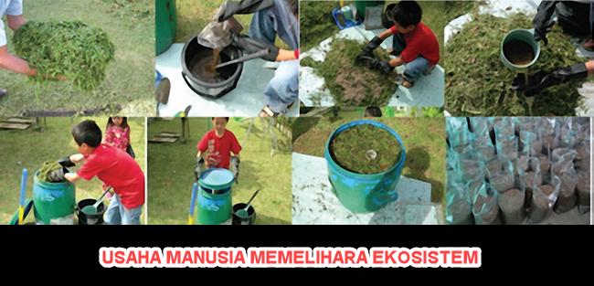 Pemeliharaan Ekosistem