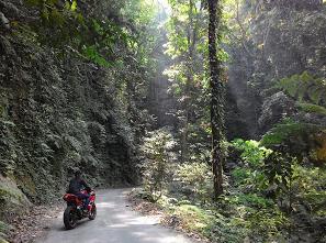 hutan blantara kroyakan jalan menuju curug bajing