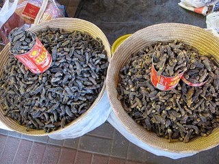 The most common ways to eat mopane worms are dried and fresh photo by leo laempel