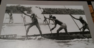 Asmat men paddling a dugout canoe, standing