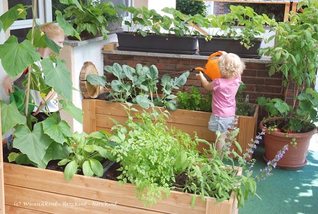 Gartenarbeit mit Kindern. Wertvoll und voller Möglichkeiten zum Kompetenzerwerb. Selbstwirksamkeit, Verantwortung, Vertrauen. Das eigene Tun bewirkt etwas. Ich leiste meinen Beitrag! Gartenarbeit ist Montessori.