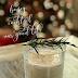 Snow Honey Cocktail #SundaySupper