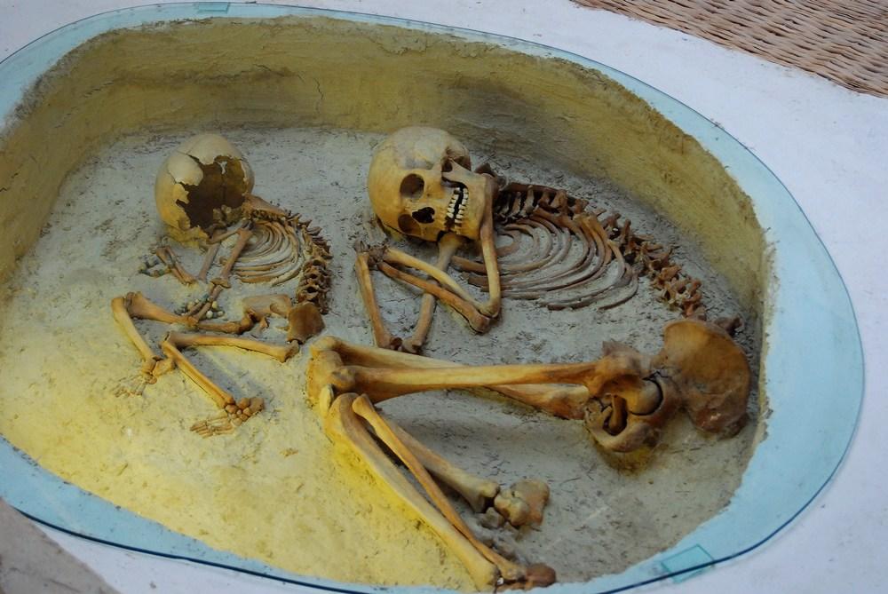 détail des squelettes qui occupaient une place importante dans la maison
