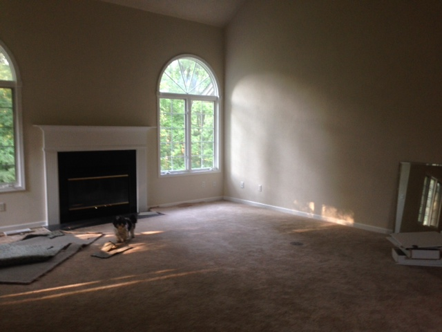 Before pic of living room at fixer upper - Hello Lovely Studio