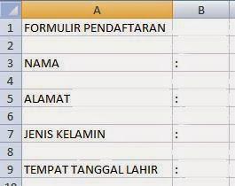 langkah-langkah membuat formulir pendaftaran di ms excel