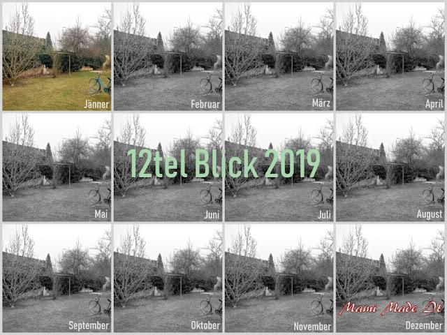 12tel Blick 2019 Jänner
