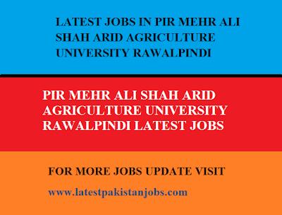 LATEST JOBS IN PIR MEHR ALI SHAH ARID AGRICULTURE UNIVERSITY RAWALPINDI SITUATIONS VACANT