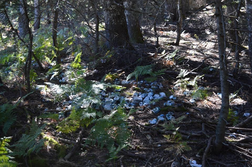 Αποτέλεσμα εικόνας για παρανομοι σκουπιδοτοποι στην πολυδροσοσ φωκιδασ