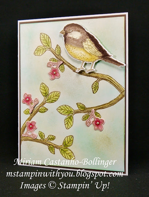 Miriam Castnho-Bollinger, #mstampinwithyou, stampin up, demonstrator, dsc, all occasions card, best birds stamp set, birds & blooms thinlits, big shot, watercolor pencil, su