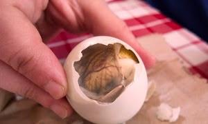 Ini makanan Unik Di Dunia, Jangankan Memakannya Melihatnya Saja Anda Bisa Mual