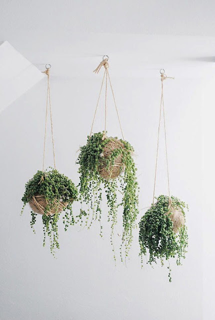 how to make macrame plant hangers 20 diy macrame plant hanger patterns do it yourself 5078