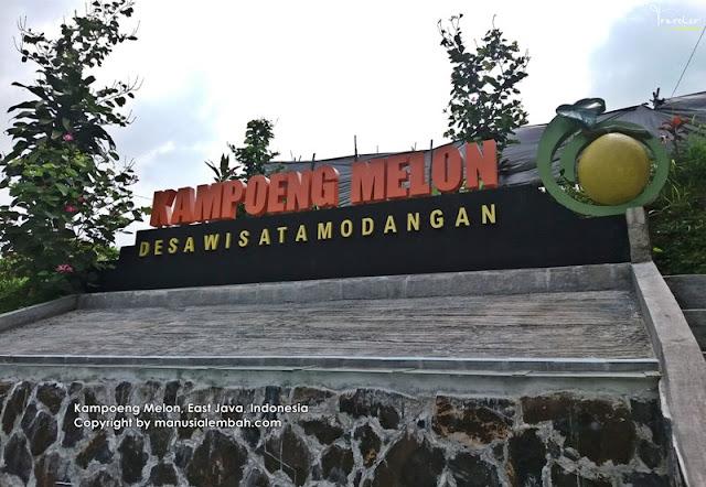 kampung melon