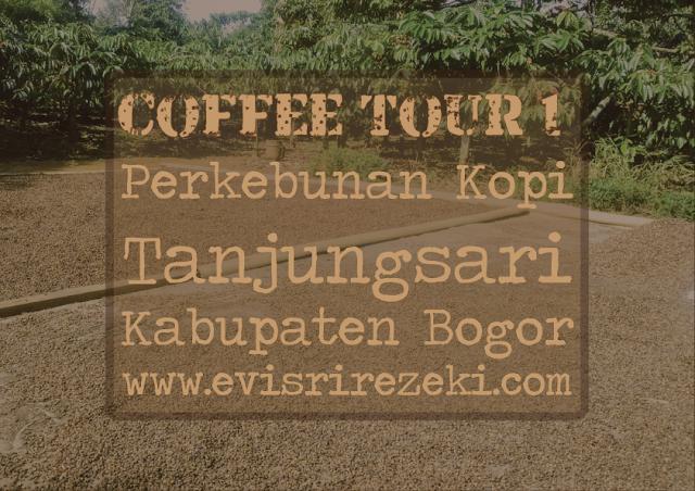 Coffee Tour 1: Perkebunan Kopi Tanjungsari, Kabupaten Bogor