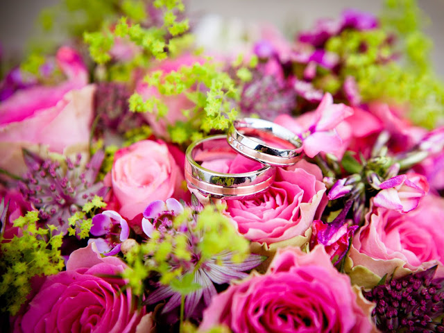 Creative Ideas to Take Photos of Wedding Rings | NileCorp.com