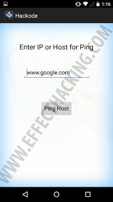 Hackode Ping tool snapshot
