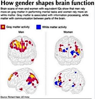 Ποιος είναι πιο έξυπνος άνδρες ή γυναίκες;