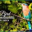 Bird Sanctuaries in India | General Awareness | FREE Study materials For Competitive Exams