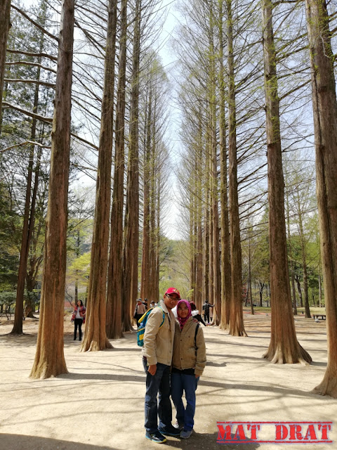 Itinerary Ke Seoul Korea  5/ 6 Hari : Trip Bajet