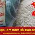 Bán gạo tám thơm Hải Hậu 17.800đ/kg - Giao tận nhà