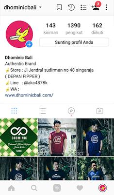 Pengisian biodata profil instagram