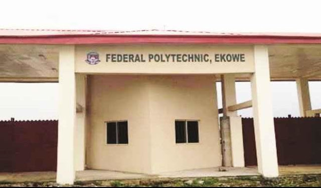 Nigeria: Federal Poly Ekowe Occupied By Rats, Lizards - Lawmaker