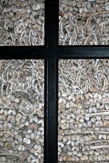 Gebeine von Kriegsgefallenen in einem Ossarium in Iltalien