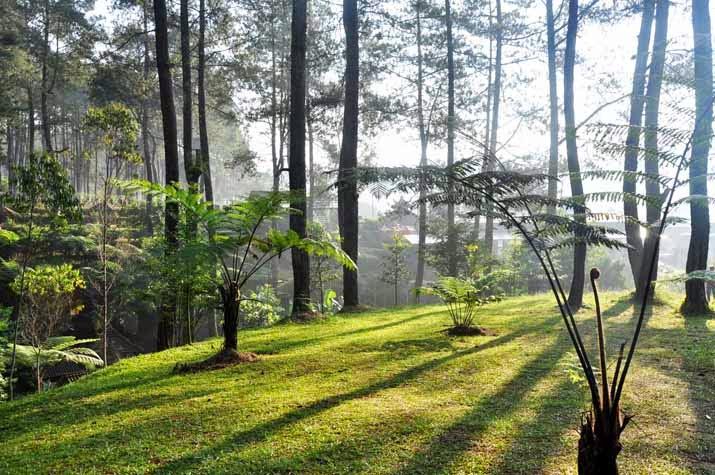EO Outbound Gathering di Bandung Lembang